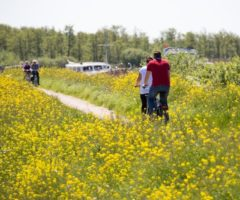 Wandelen en fietsen door De Alde Feanen